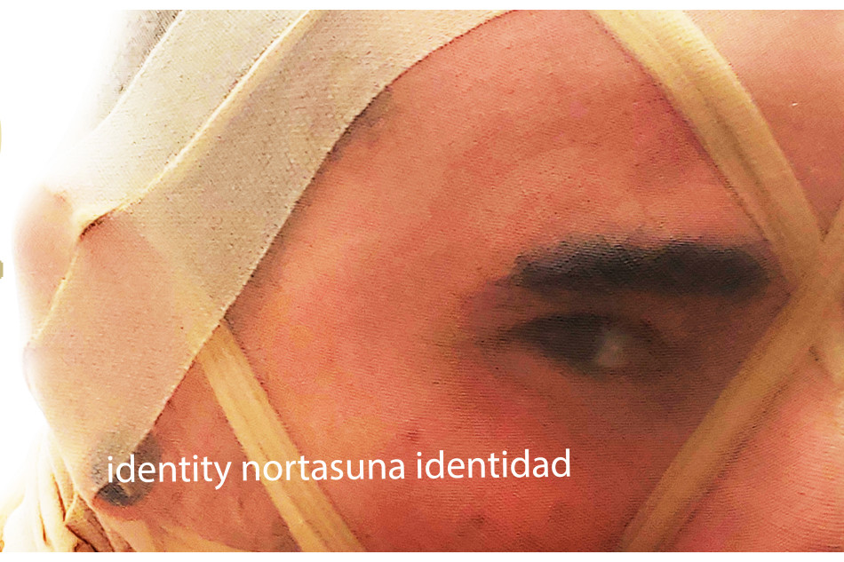 irudi berria/nueva imagen/new image ACT 2020